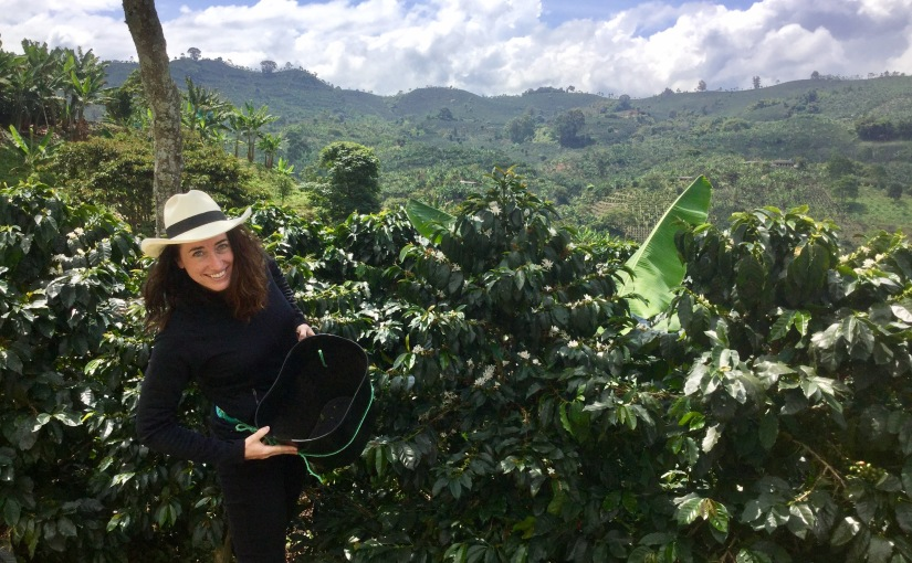 Visiting a coffee farm inColombia